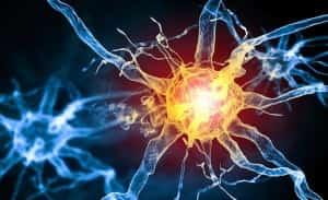 nerve-conduction-studies